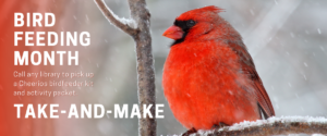 Bird Feeding Month Take-and-Make